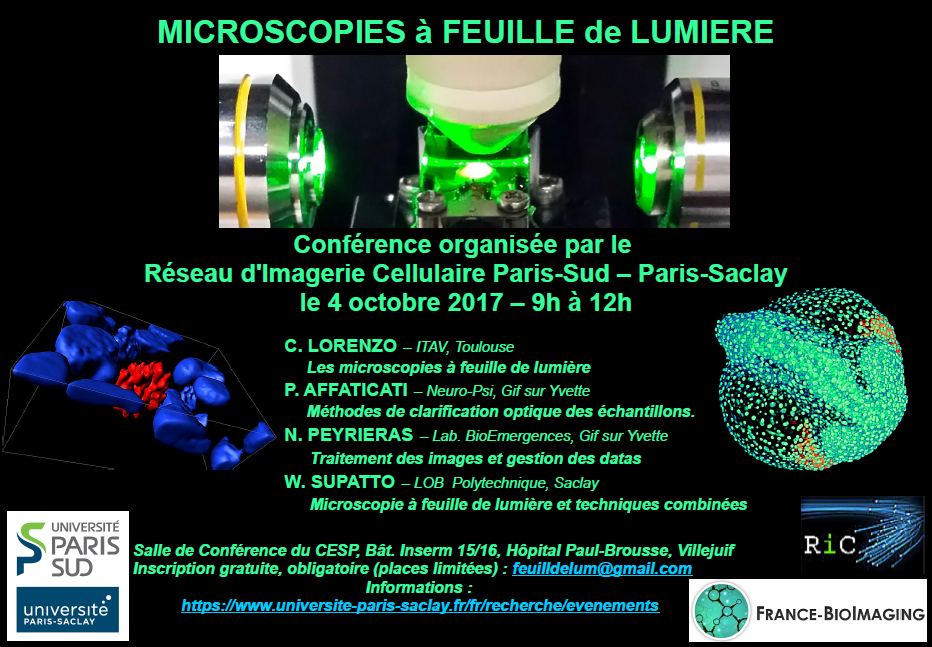 micro feuille seminaire